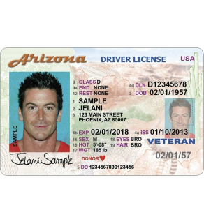 Arizona Driver's License, Novelty