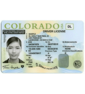 Colorado Driver's License, Novelty
