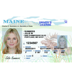 Maine Driver's License, Novelty