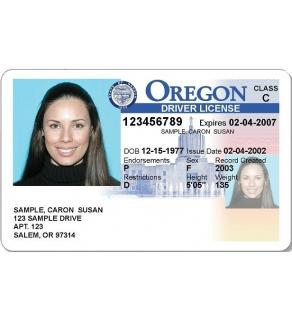 Oregon Driver's License, Novelty
