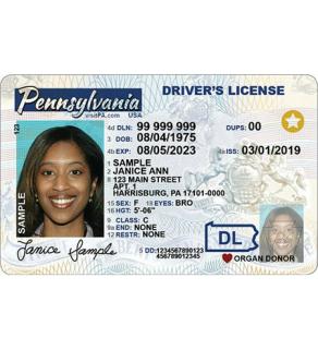 Pennsylvania Driver's License, Novelty (Enhanced)