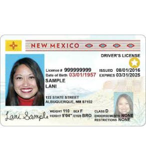 New Mexico Driver's License, Novelty