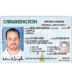 Washington Driver's License, Novelty