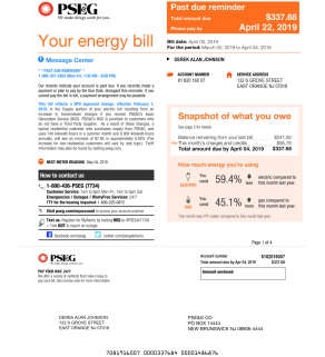 Electric Bill, PSE&G