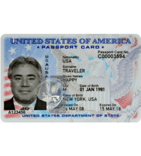 US Passport Card, Novelty