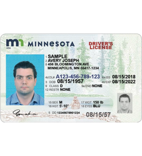 Minnesota Driver's License, Enhanced (Novelty)