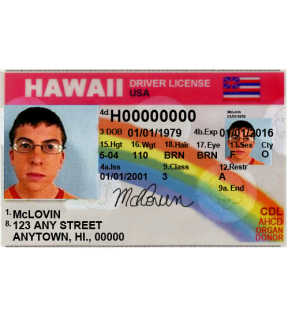 Hawaii Driver's License, Novelty (Enhanced)