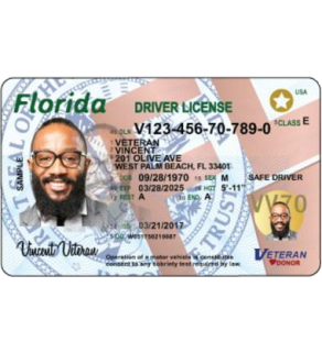 Florida Driver's License, New (Enhanced)