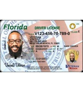 Florida Driver's License, New (Enhanced)