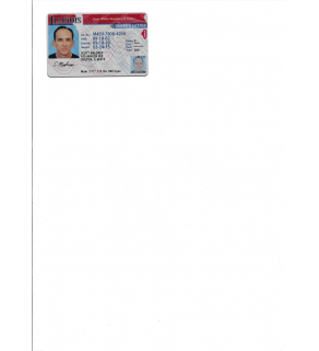 Driver's License, Scanned