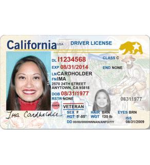 California Driver's License, Enhanced (Novelty)