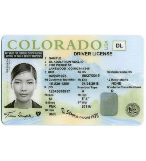Colorado Driver's License, Novelty