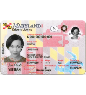 Maryland Driver's License, Novelty