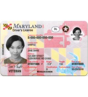 Maryland Driver's License, Novelty