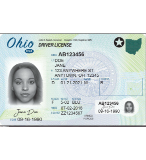 Ohio Driver's License, Novelty