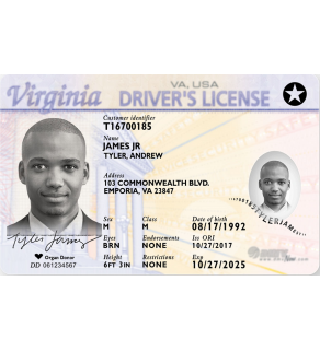 Virginia Driver's License, Novelty