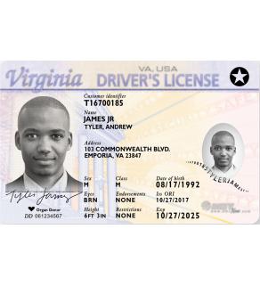 Virginia Driver's License, Novelty