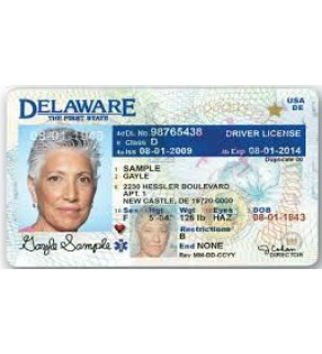 Delaware Driver's License, Novelty (Enhanced)