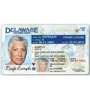 Delaware Driver's License, Novelty (Enhanced)