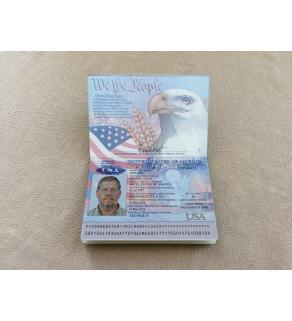 Passport, Front Snapshot