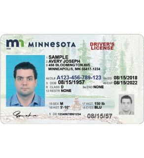 Minnesota Driver's License, Enhanced (Novelty)